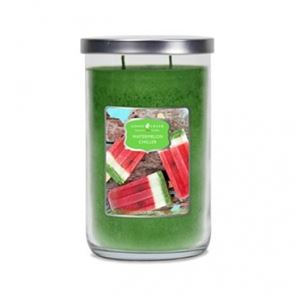 Goose Creek Tumbler Candles Watermelon Chiller 20oz