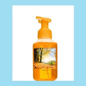 Bath and Body Works Warm Autumn Glow Foaming Soap 259ml