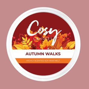 Cosy Candles Wax Pods Autumn Walks 110gm